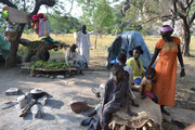 Thumb_sudan_20blue_20nile_20family_20camps_20under_20tree_20nmarinkovic_0